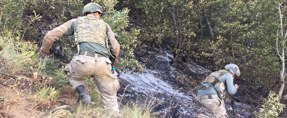 'Yeşil listede' bulunan PKK'lı terörist öldürüldü